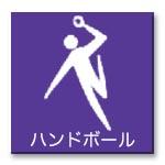 menu_icon_handball